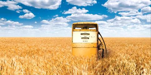 Автомобильное биотопливо