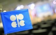 Венесуэла призывает ОПЕК провести заседание с участием России