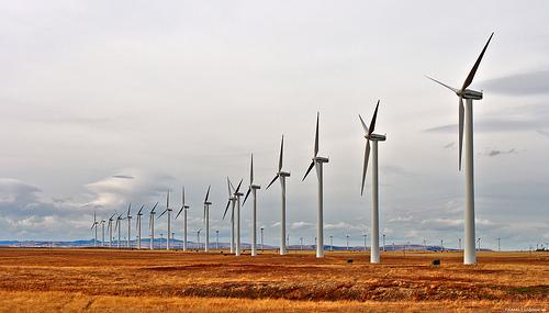 Какими преимуществами обладают ветровые электростанции