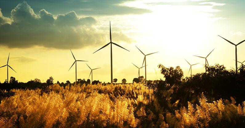 Полный переход навозобновляемую энергию Майорка иИбица намерены совершить к2050 году
